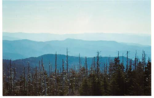 TN-Clingmans Dome Forney Ridge  view