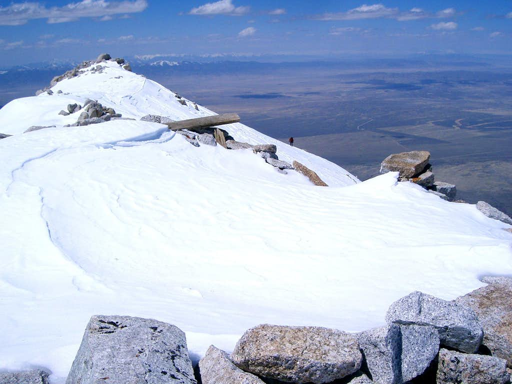 Ibapah Summit - Grizz just yards away