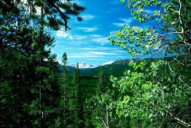 Mt Lovenia from Bald Mtn Trail