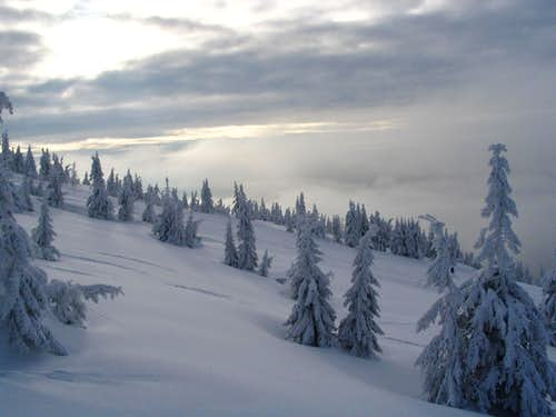 Winter in Krkonose