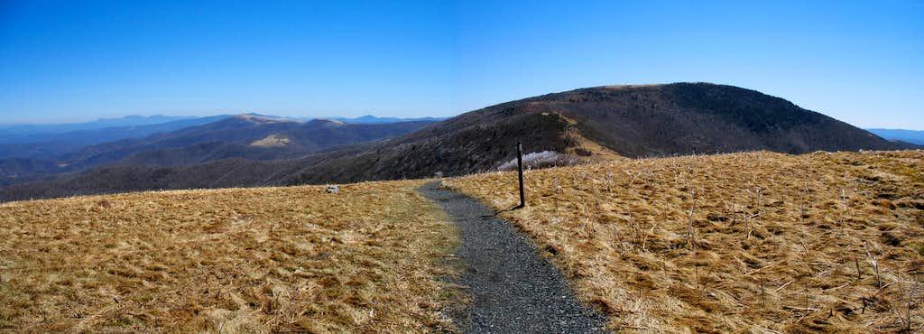 Grassy Ridge Bald Pano