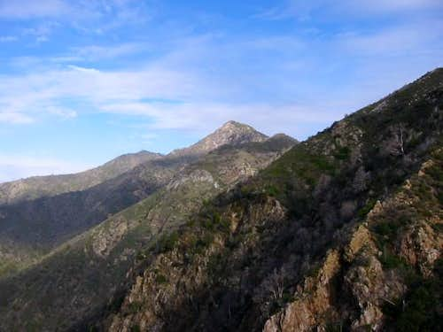 Cone Peak from the Vicente...