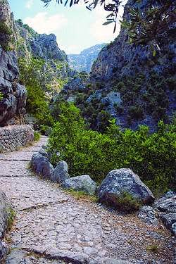Old Cobble stoned foot-paths (Barranc de Biniaraix)