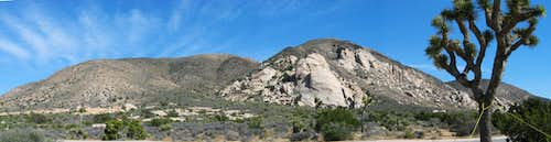 Ryan Mountain Panorama