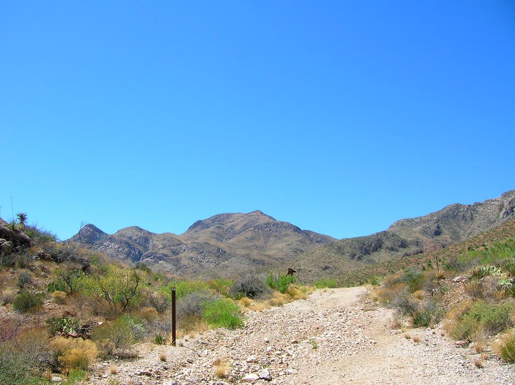North Mount Franklin (Texas) from tin mine trail