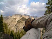 Sierra-Nevada's Bear Paw