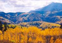 Yellow aspens below Nebo