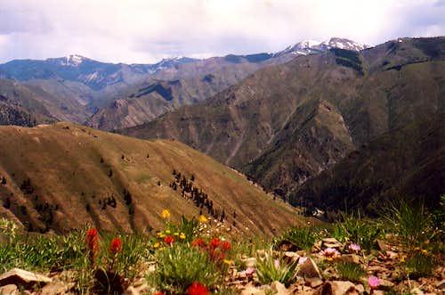 From Mahoney Peak
