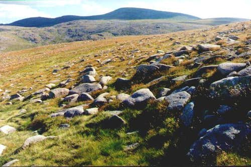 Ben MacDui from the Cairn...