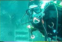 Wreck Diving in Newfoundland
