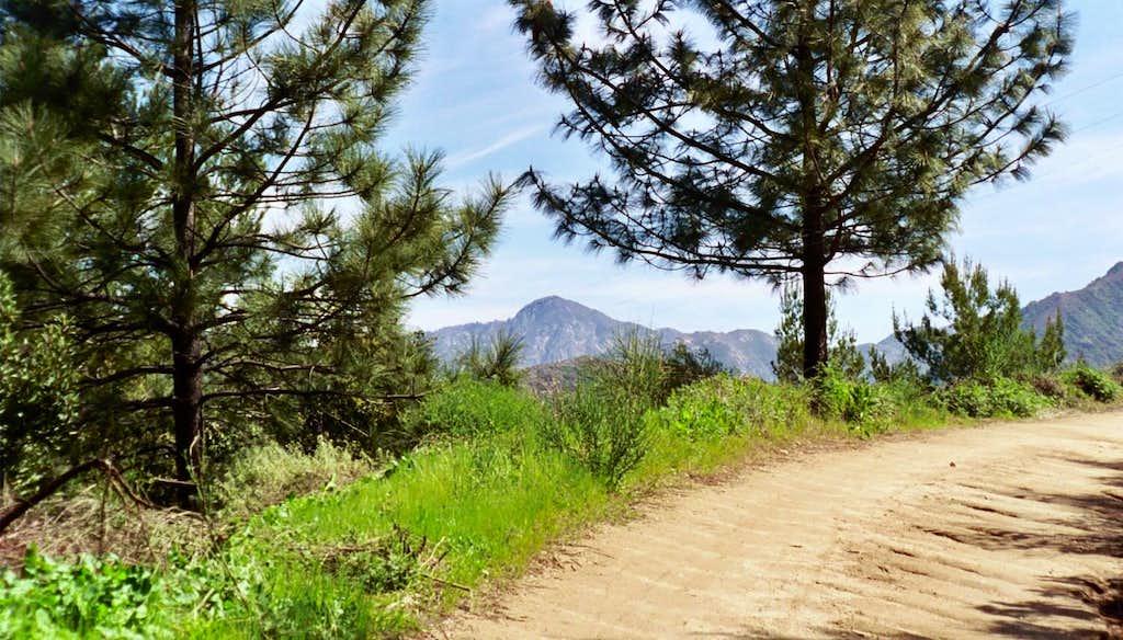 Strawberry Peak on a Trail Run