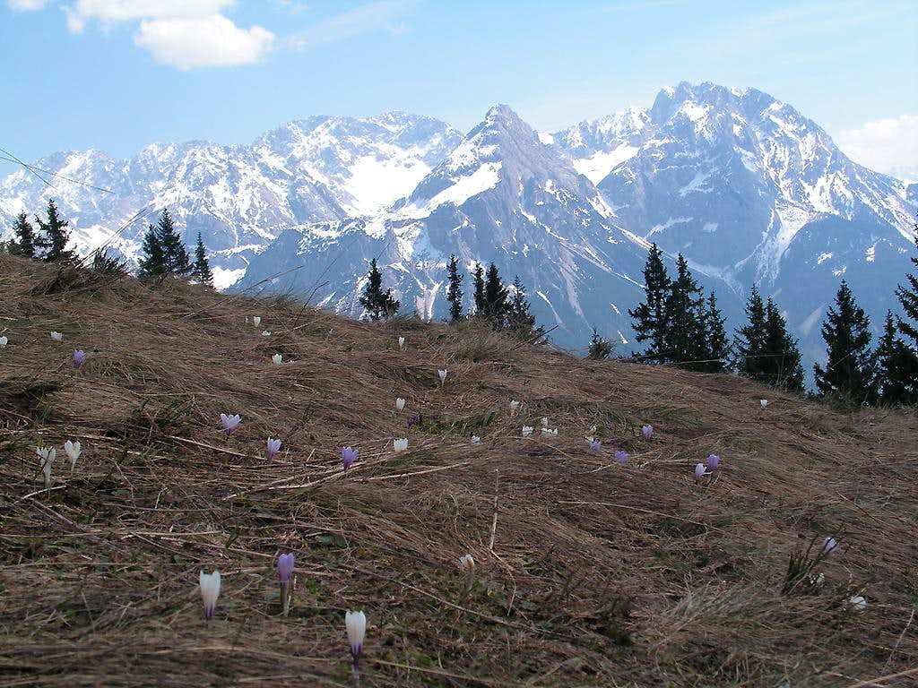 Spring in the mountains.
