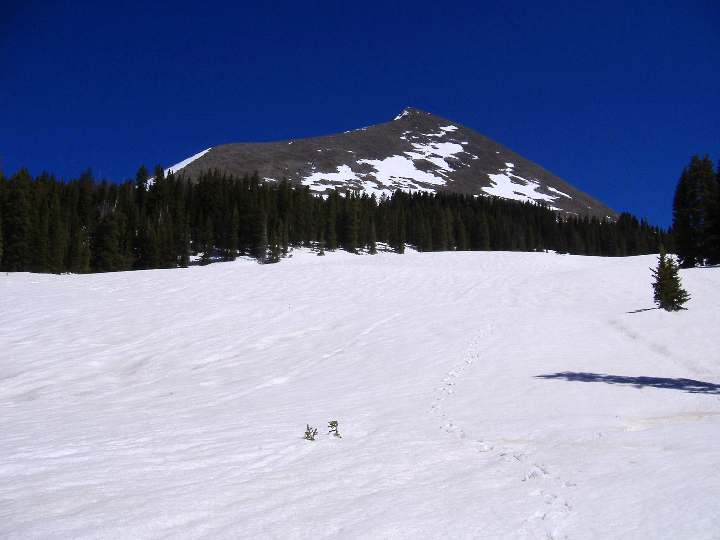 Mount Mellenthin in May