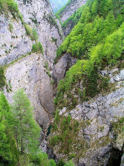 The Lumiei Gorge