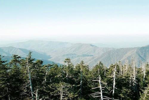 North from Clingmans Dome