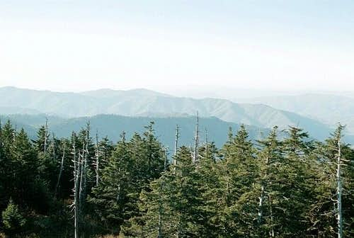 Northwest of Clingmans Dome