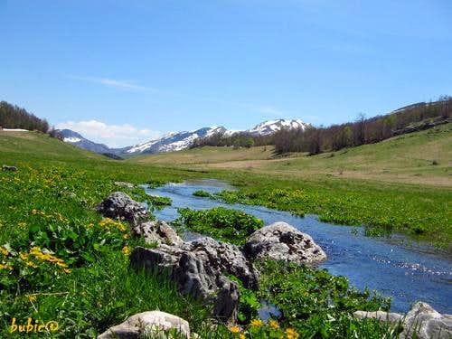 Studeni stream, Gradina