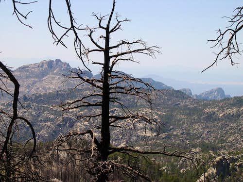 Marshall Peak