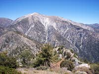 View of west face of Mt. San Antonio ( Mt. Baldy)