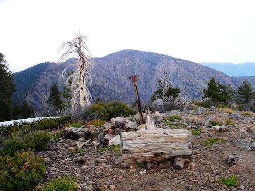 Baden-Powell From Throop Peak Summit