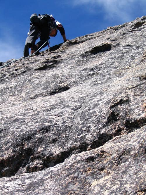 Sequoia climber