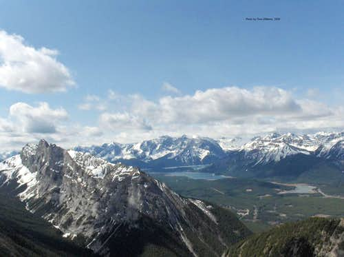 View from Mount Brock