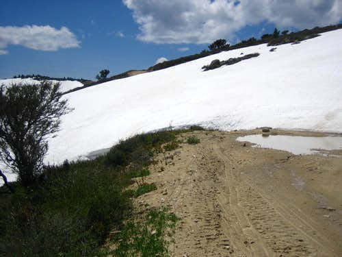 Snow Drifts-Late May