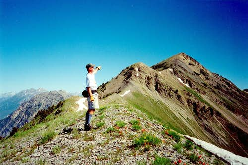 View of Provo Peak