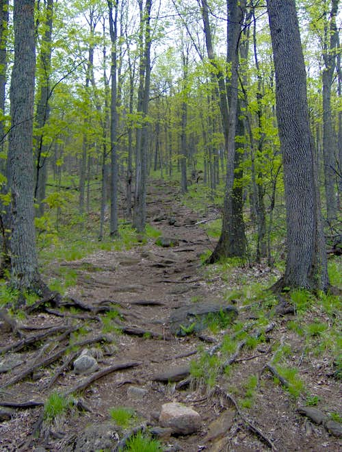 The trail gets steep