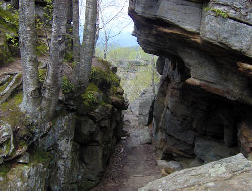 A rock crevass
