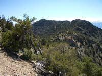 Looking at the summit of Black Mountain