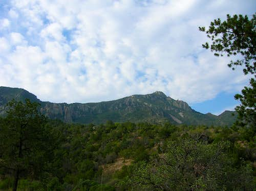 Emory Peak from Window View