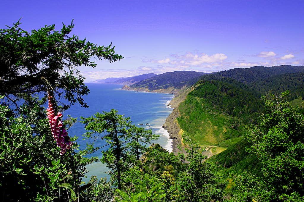 Loast Coast Trail