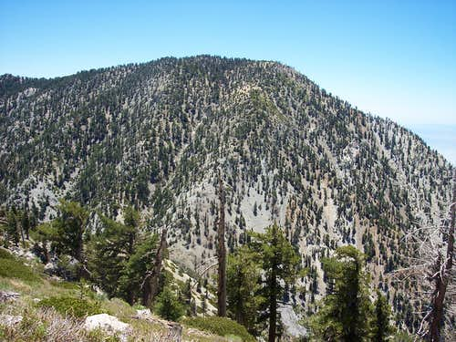 West Face of Cucamonga Peak