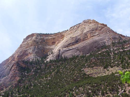 Un-named Dinosaur NM Peak