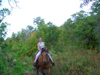 Honeymoon on horseback