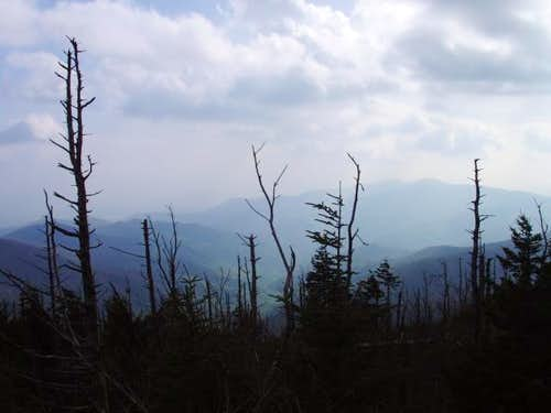 View from the top of Clingmans Dome