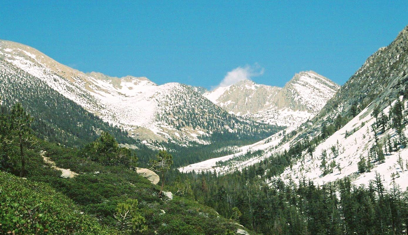 View up Charlotte Creek drainage