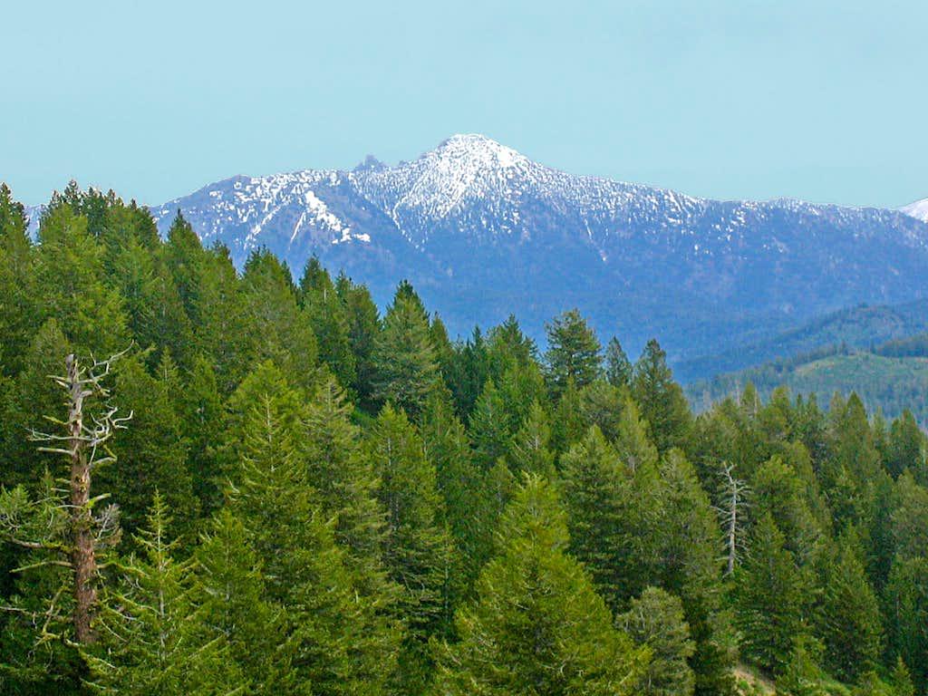 Steele Mountain from Sheep Mountain