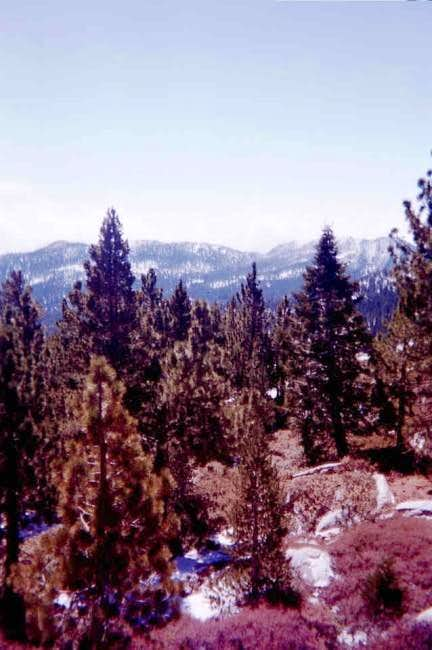 Near Wellman\'s Divide. Mar...