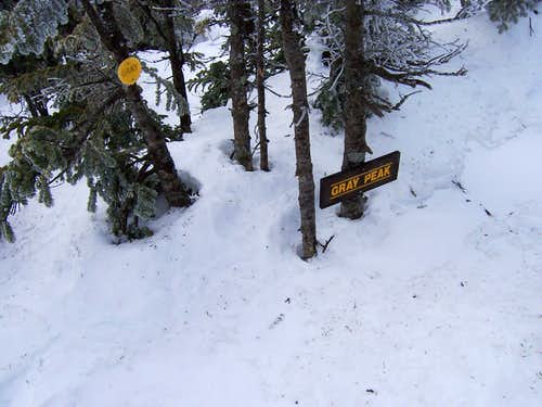 Summit sign on Gray Peak