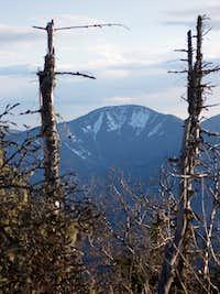 Giant Mt. from Sawteeth
