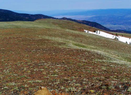 The long summit meadow