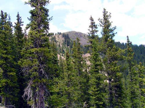 Manzanita Canyon Trail