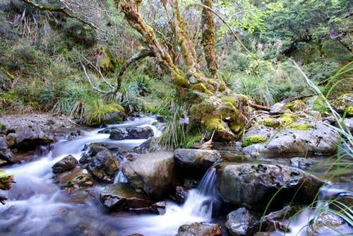 Waterfall on the Speargrass Track to Mt. Angelus