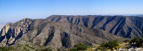 Shumard panoramic