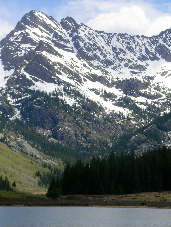 Peak C with Moose