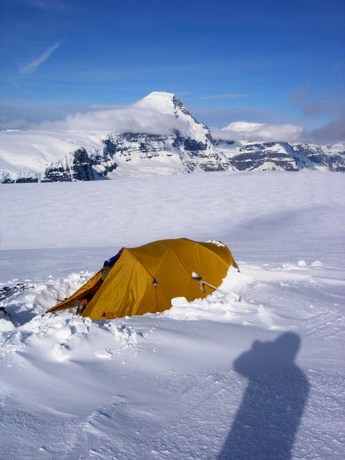 Mt Columbia from Tent Site