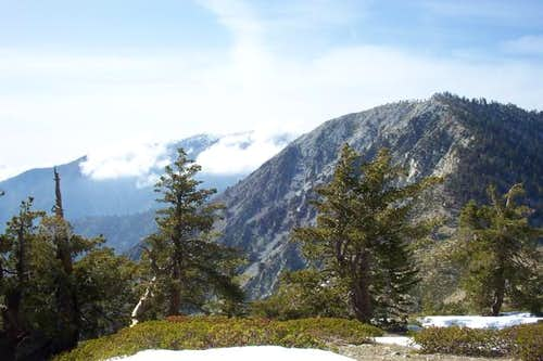 Telegraph Peak with Mt Baldy...
