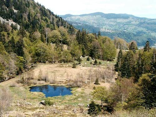 Peaty lake of Falimont (may...